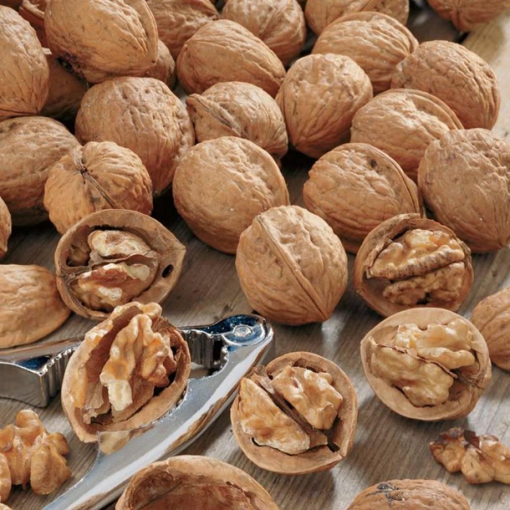 Грецкий орех в скорлупе, орехи, 1 кг